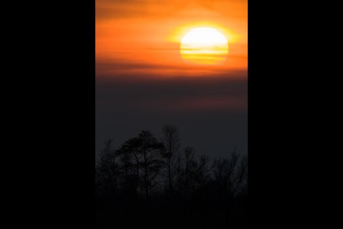 Moor-Sonne 2